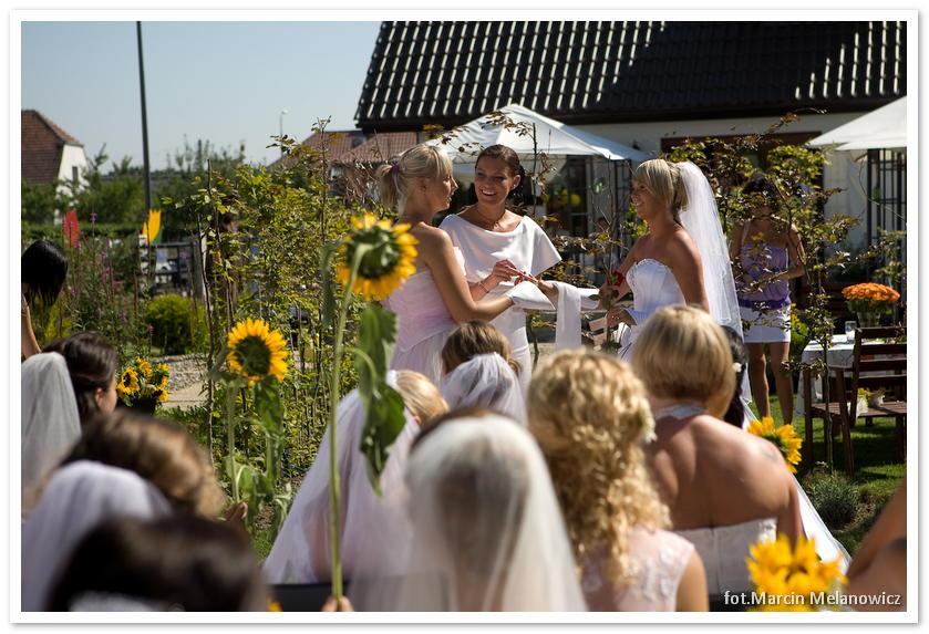 motylarnia-kawiarnio-kwiaciarnia_1