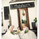 motylarnia-kawiarnio-kwiaciarnia_6