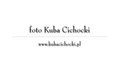 Panny Młode 2009 - zdj. Kuba Cichocki