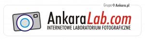 ankaralab_logotyp